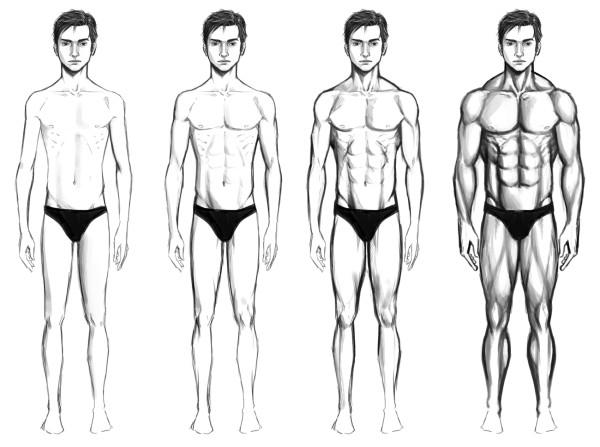 plan de régime de type corps ectomorphe